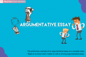 Argumentative Essay on Fake Essay Writing Services